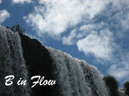 b-in-flow_small